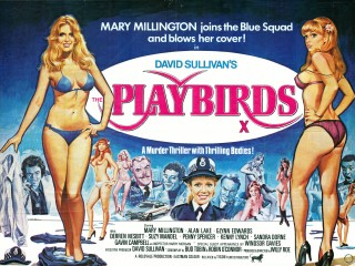 Playbirds 1978 Quad poster